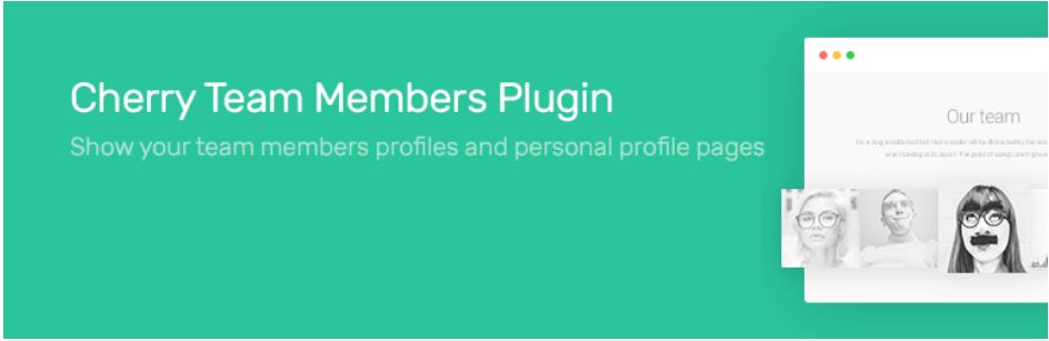 cherry team member plugin